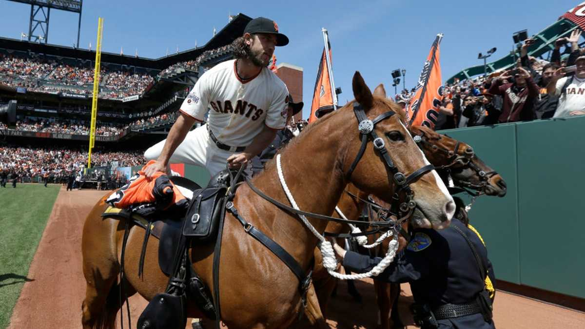 Mason Saunders – MLB All-Star, Rodeo Champ