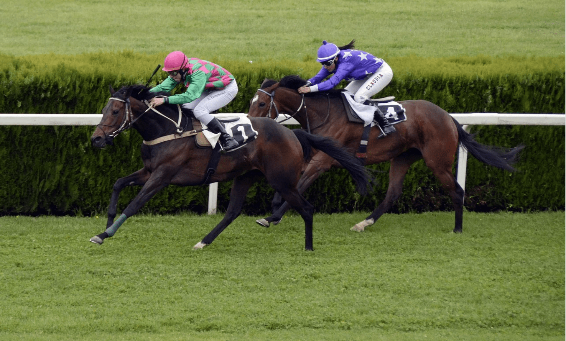 Essential Quality Leads Favorite Odds at the 146th Kentucky Derby