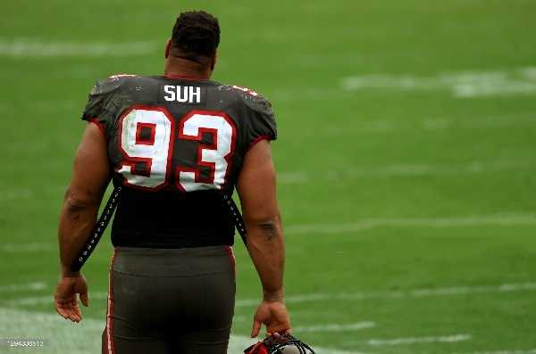 Ndamukong Suh  (Photo by Mike Ehrmann/Getty Images)