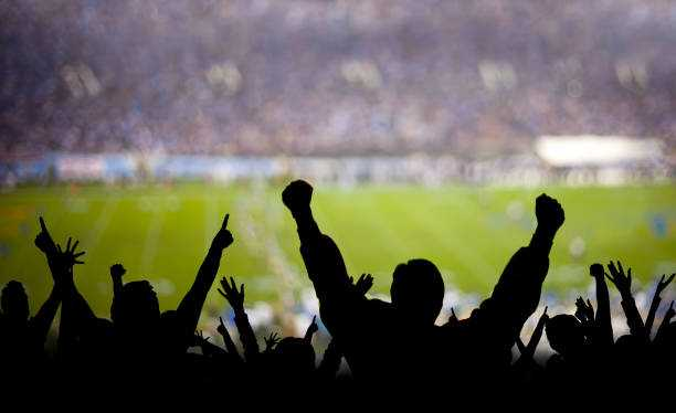Just How Intelligent Are Sports Fans?